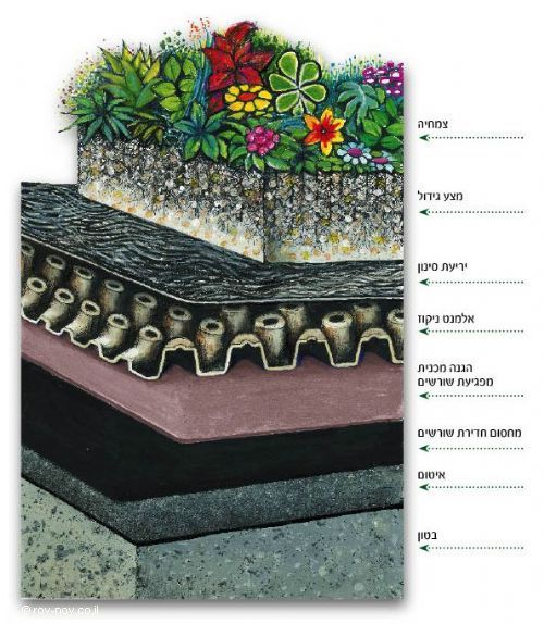 שלבי ביצוע בטכנולוגיה לגינה אמיתית Roof Garden Educational Leadership Quotes Instagram Story