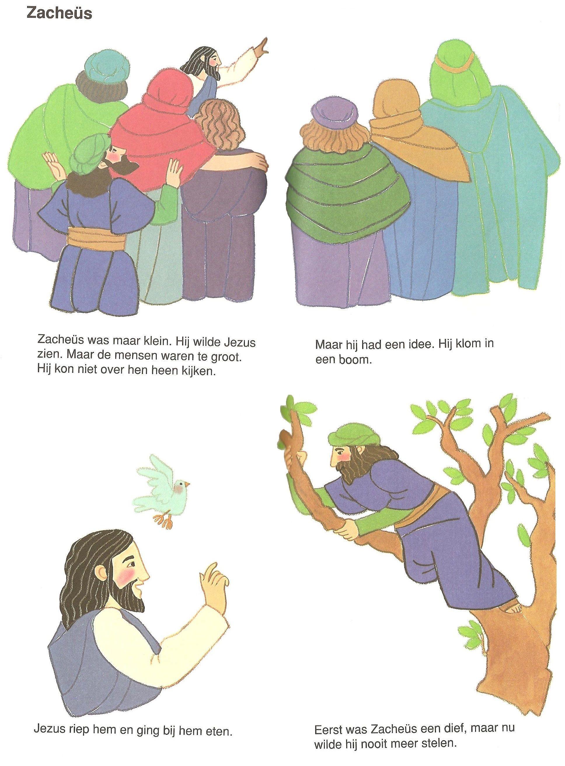 Zacheus Zacheus Bijbel Thema