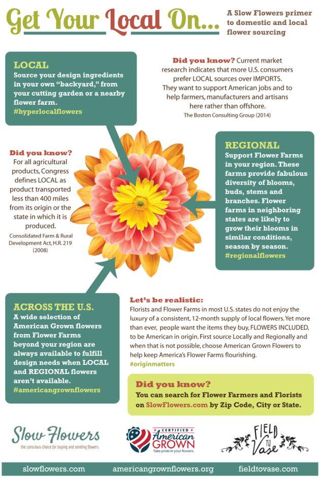 Free Downloads Slow Flower British Flowers Growing Flowers
