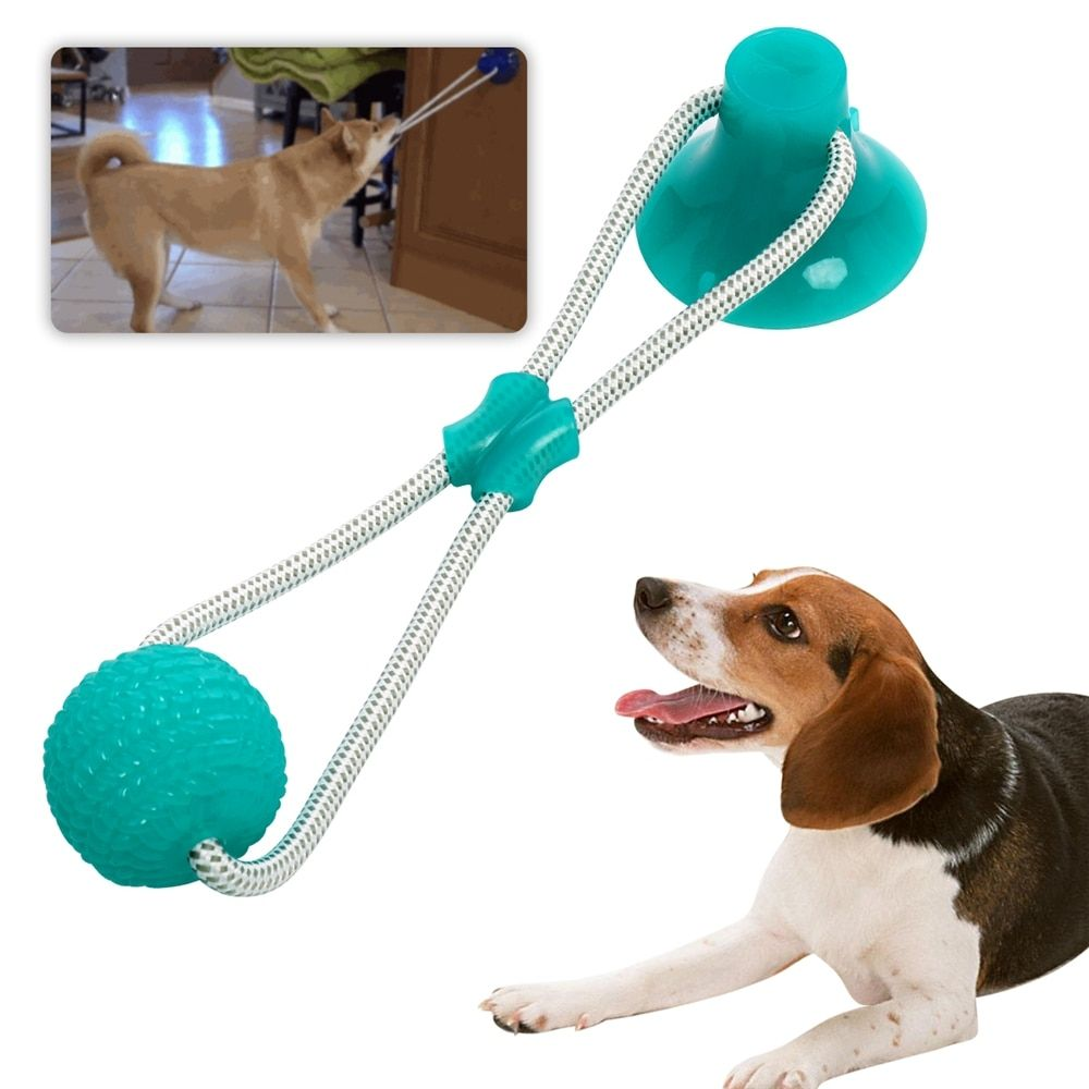 Multifunction Pet Molar Bite Toy With Suction Cup Interactive Dog
