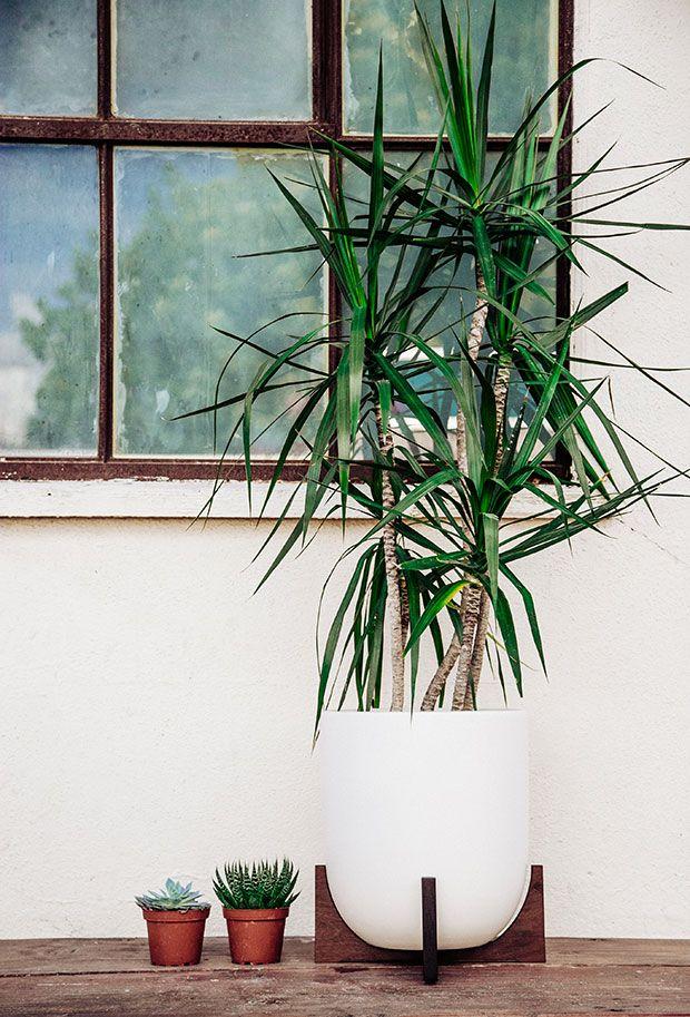 Modernist Planter Giveaway with Modernica Encontrado en blog.justinablakeney.com