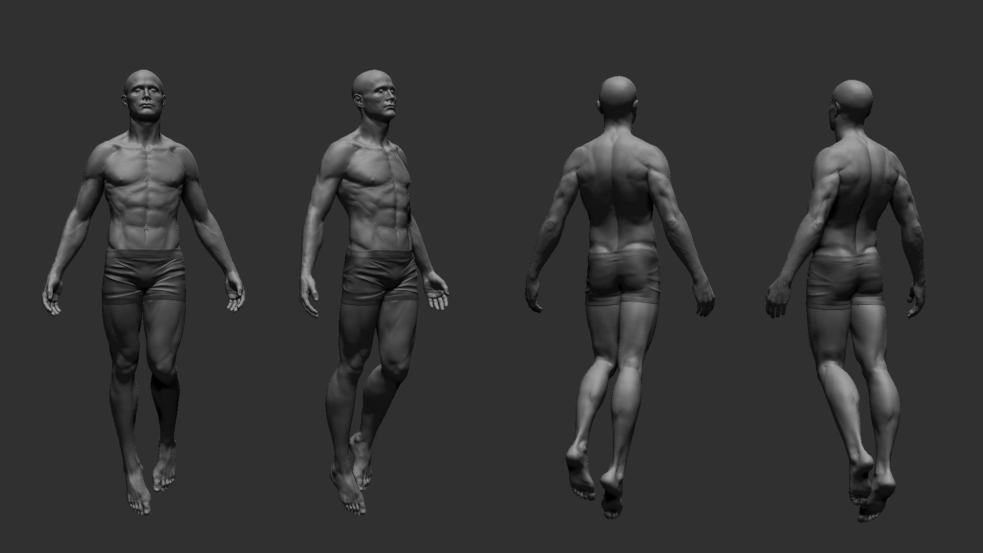 ArtStation - Male Anatomy Study, Richard Trouve   3D Male Body ...