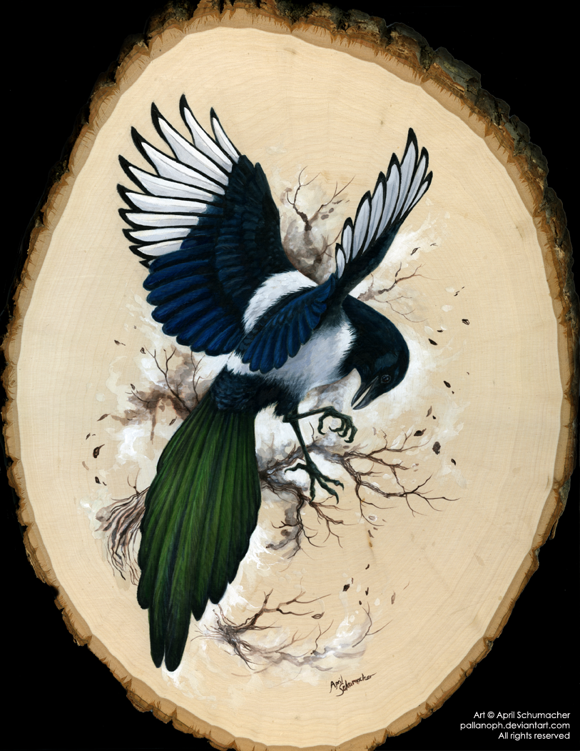 Traditional magpie tattoo - photo#48