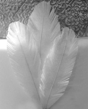 rice paper feather wedding cake how to make edible rice paper feathers for wedding cakes 19224