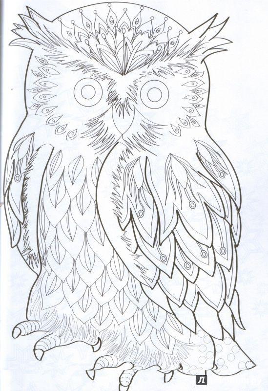 Иллюстрация 2 из 18 для Сказочная зима. Раскраска ...