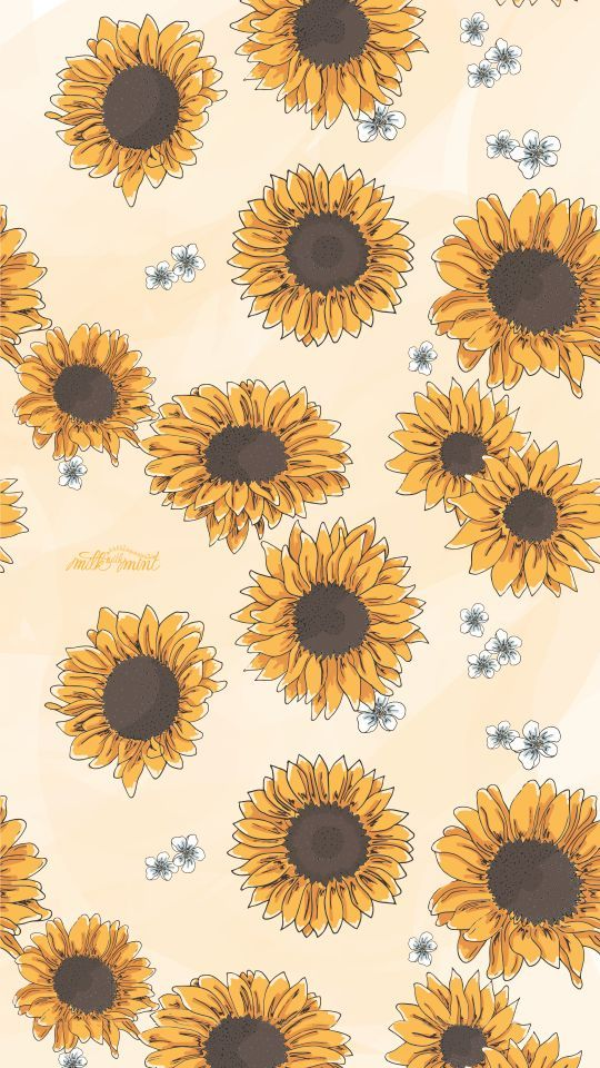 Sunflower background Pretty wallpapers, Cute wallpaper