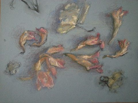 Drawing Course with Artist Nancy Jaramellio at @VinoandvanGogh on Mondays in September and October