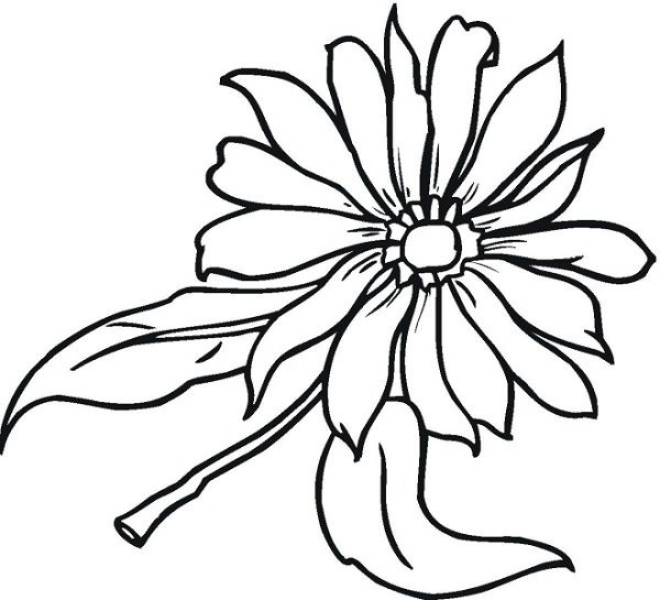 rainbow flower coloring pages