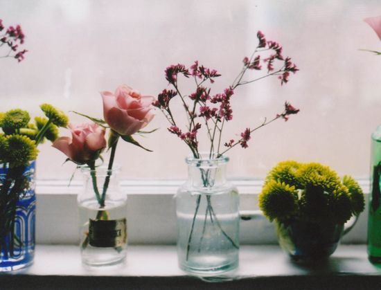 Window Sill Flowers
