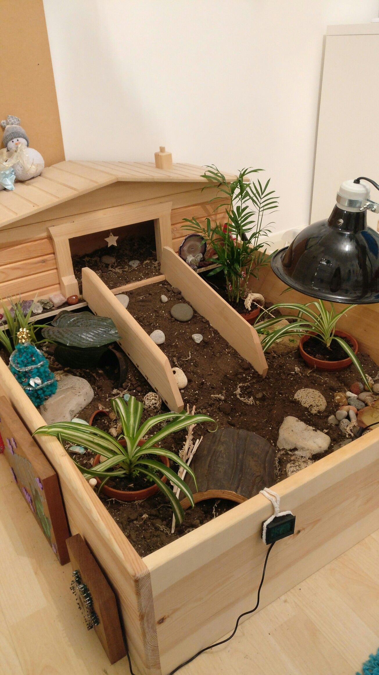 My tortoise enclosure with a few christmas decorations for Decoration habitat