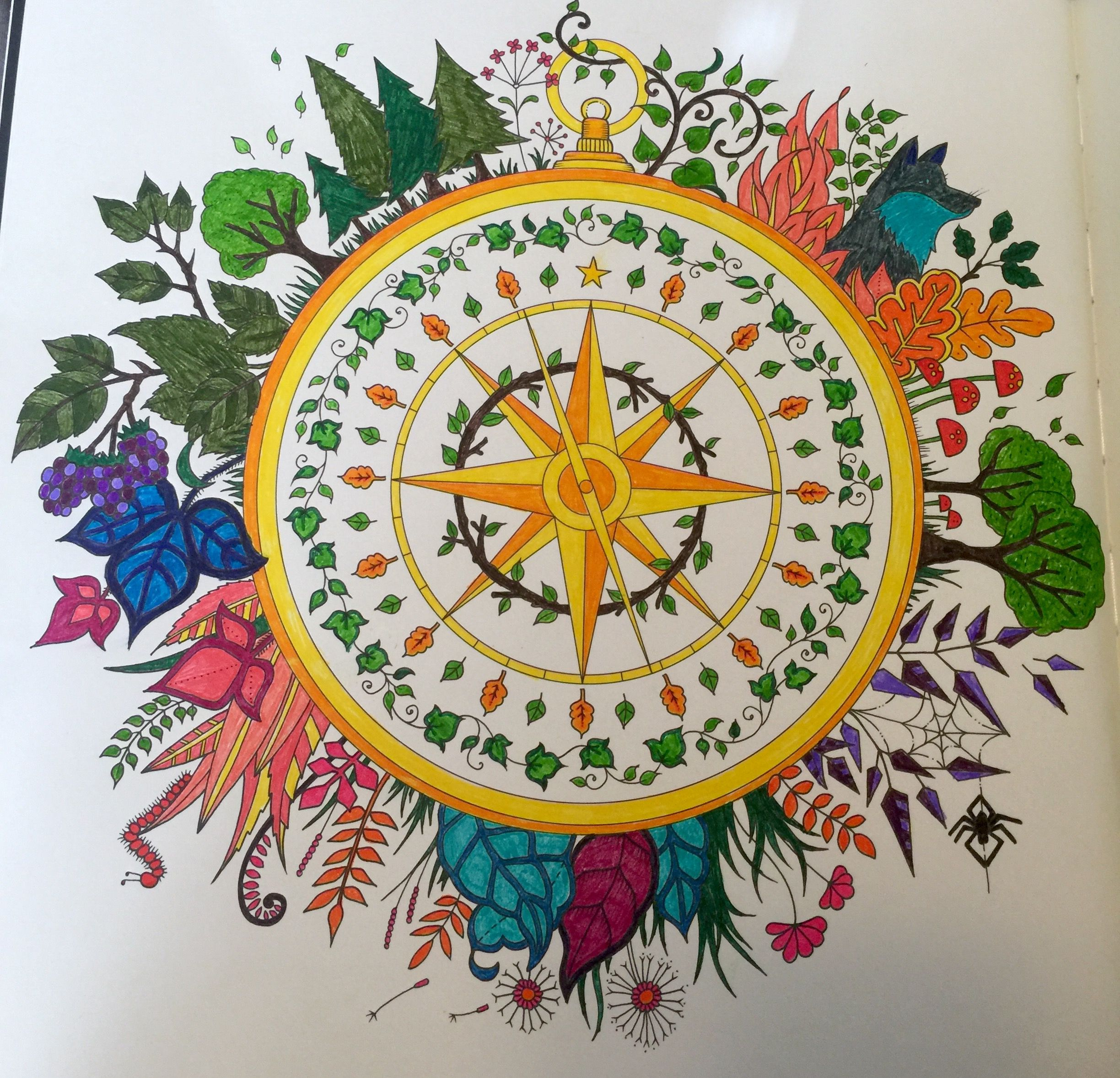 Compass Enchanted Forest Coloring Book