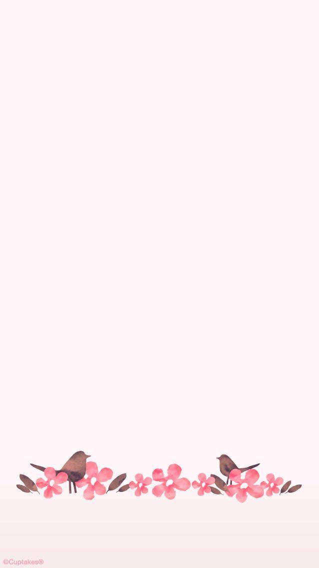 Blush Pink Floral Watercolour Birds Iphone Phone Wallpaper Background Lock Screen Fondos De Colores Fondos Para Mensajes Fondos Para Textos