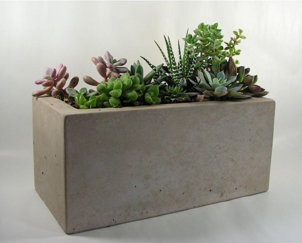 Rectangular Concrete Planter Etsy Concrete Planters Planters Rectangle Planters