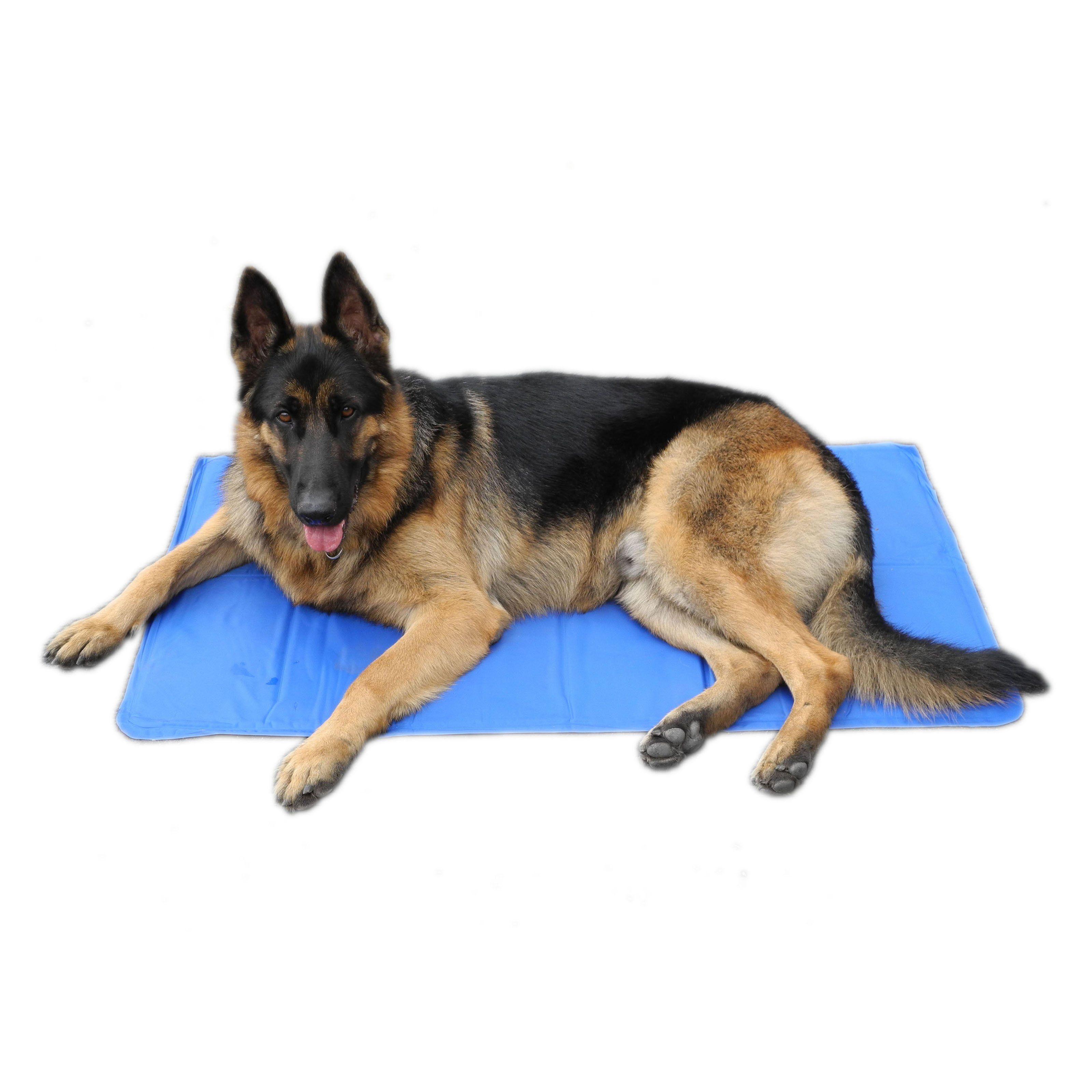 Go Pet Club Pet Cooling Gel Pad Gpc8020 With Images Pet Cooling Mat Pets Dog Bed Mat