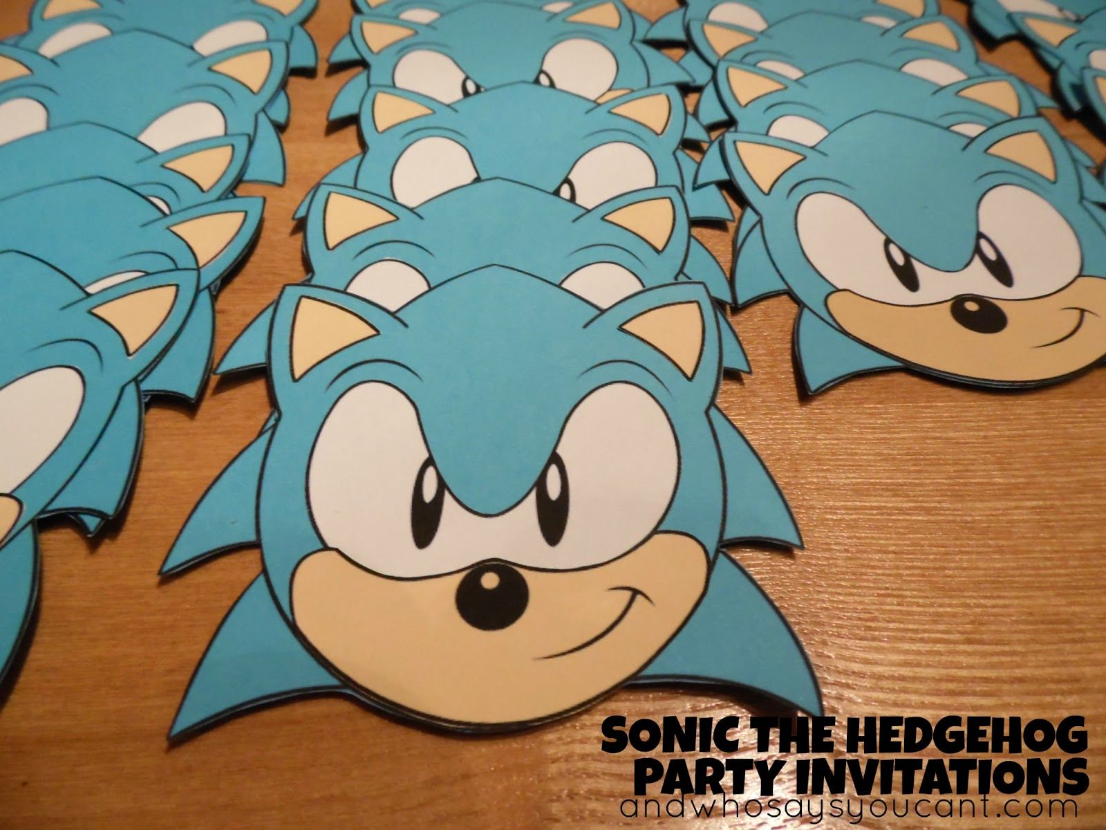 And Who Says You Cant SONIC THE HEDGEHOG BIRTHDAY PARTY
