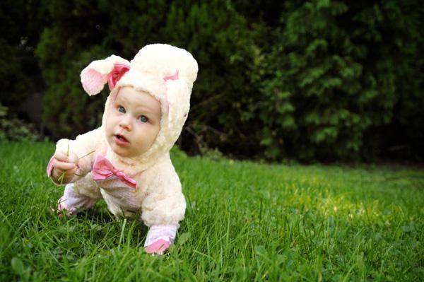DIY baby costumes Baby costumes, Diy baby and Costumes - diy infant halloween costume ideas