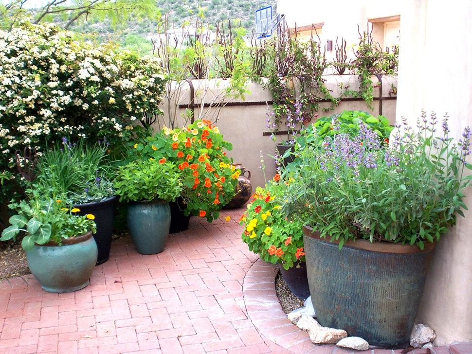 Potted Gardens Flowers herbs and even tomatoes grace a kitchen courtyard potted flowers herbs and even tomatoes grace a kitchen courtyard potted garden by the contained gardener workwithnaturefo