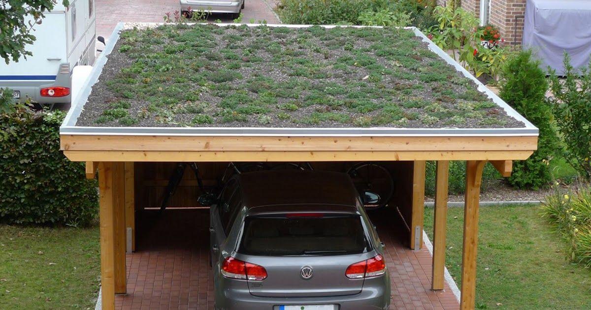 Dachbegrunung Selber Machen Gartenhaus in 2020 Outdoor