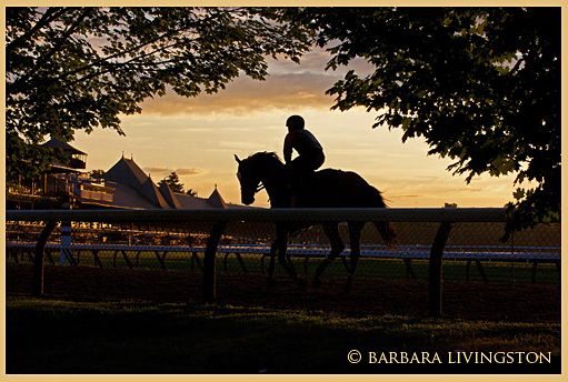 Saratoga ©Barbara Livingston