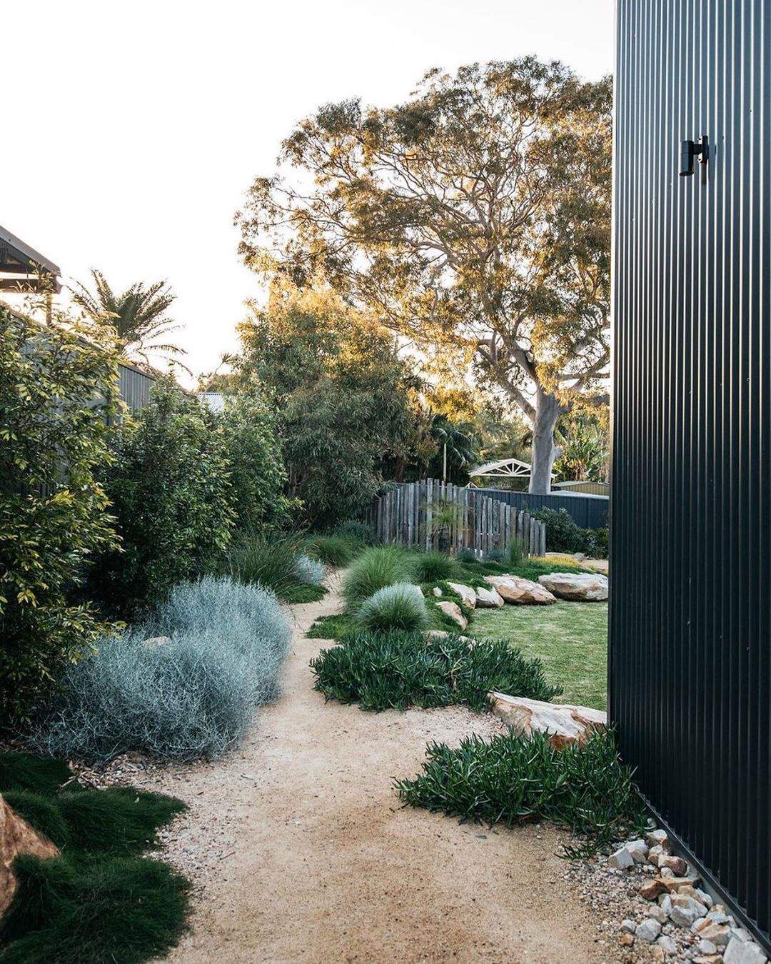 Native Plant Project on Instagram Take a peek over the fence at some new look Aussie backyards Online now at our emag link in bio