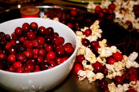 cranberry_popcorn_garlandsjpg 450300 pixels