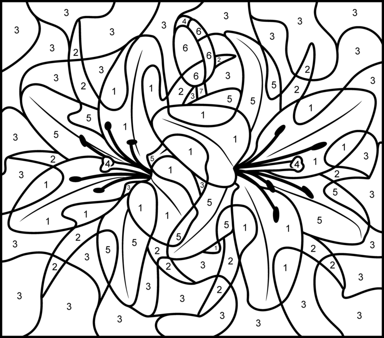 Lily - Printable Color by Number Page - Hard | free printables ...