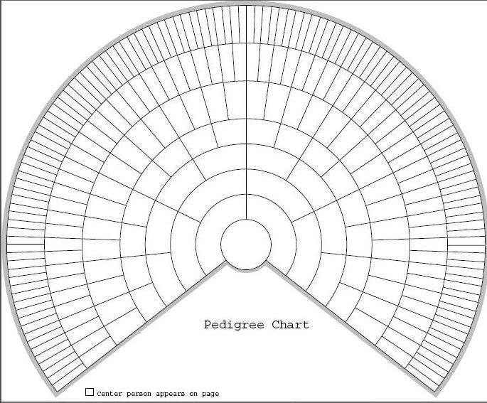 Printable Family Tree Fan Chart Chartfan Printable 360 Degree