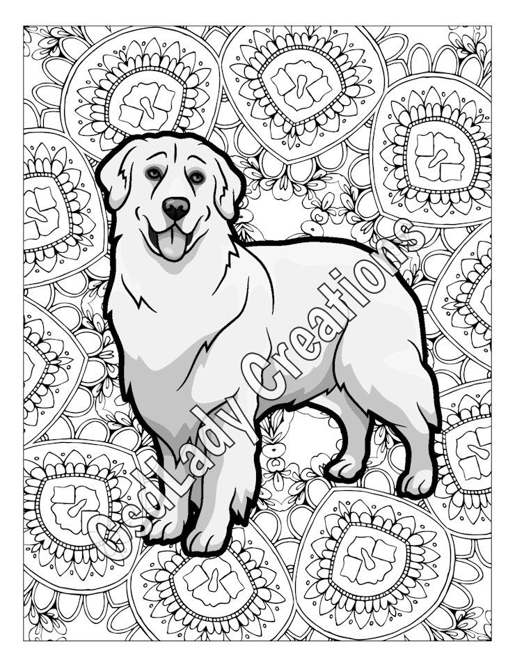 Dog Art Greyscale Coloring Page Golden Retriever Dog Coloring