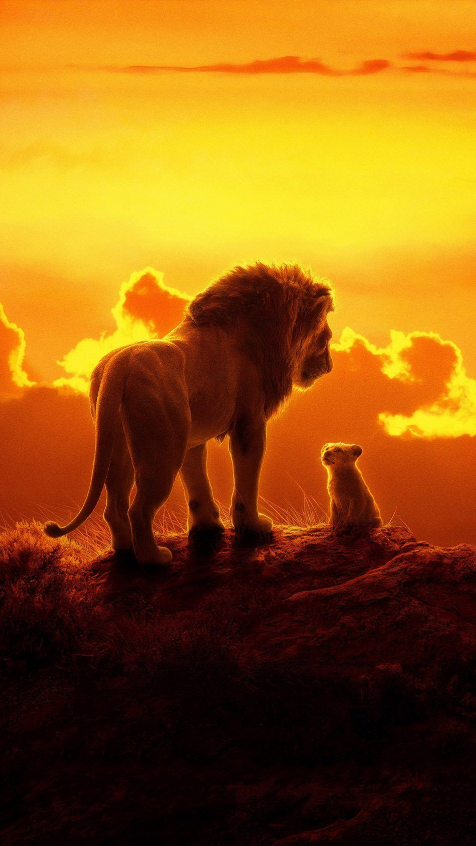The Lion King Animation 2019 Desene disney, Regele leu