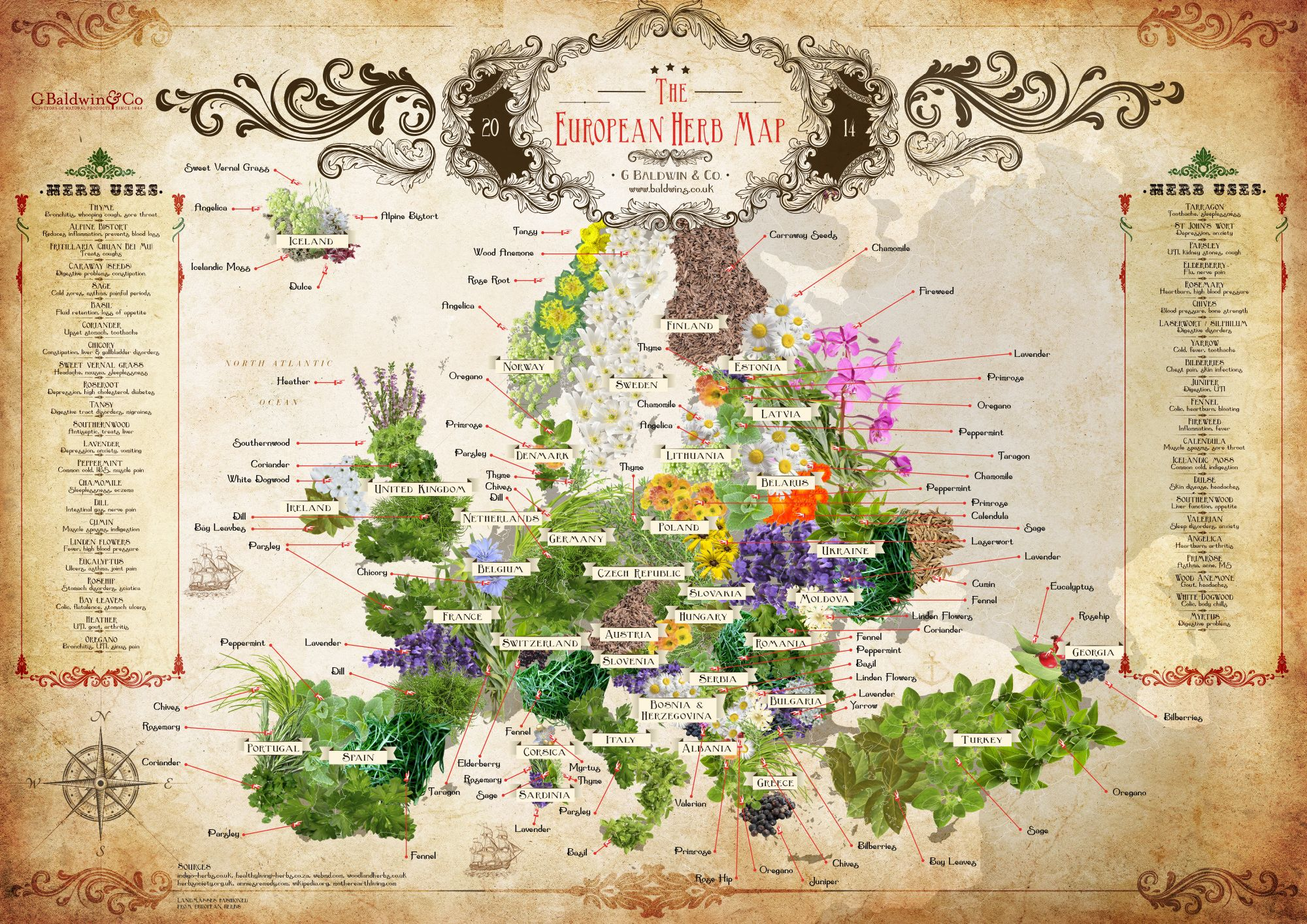 Baldwins european herb map chinese herb map and world of tea map baldwins european herb map chinese herb map and world of tea map to gumiabroncs Gallery