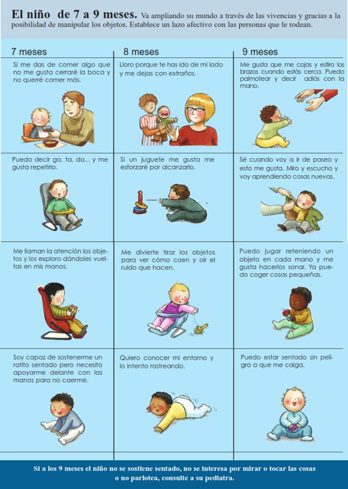Niño De 7 A 9 Meses 7 Meses Bebe Desarrollo Del Niño Bebe