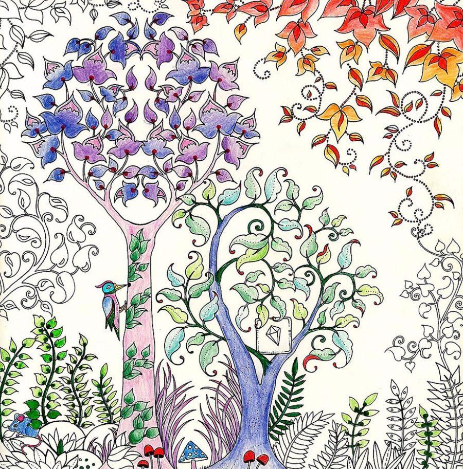 превратить рисунок волшебный сад местные жители начали