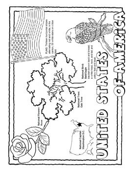 A Fun Coloring Page Containing The United State 39 S National Facts Including Flower Tree Bird And Capital I United States Facts The Unit American Symbols