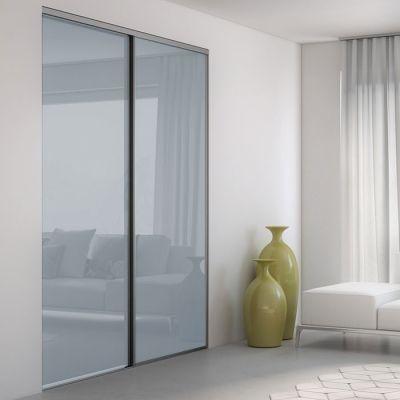 Vantail Pour Porte Coulissante En Verre Mat Gris Portes - Porte placard coulissante de plus porte intérieure vitrée double vantaux