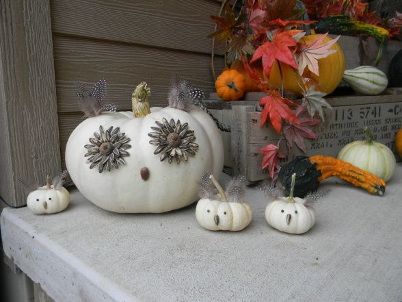 DIY Owl Pumpkin Family | DIYNetwork.com