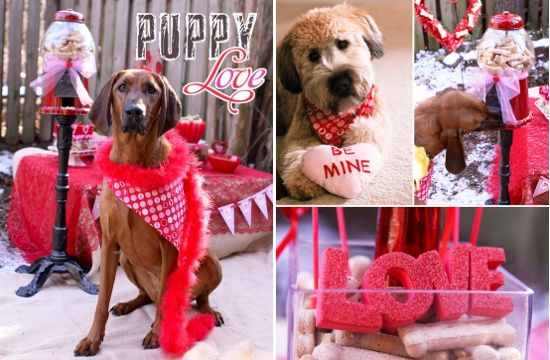 Dog Friendly Valentine S Day Party Pawsh Magazine Sendingallmylove Catalogs With Images Dog Holiday Valentines Party Dog Friends