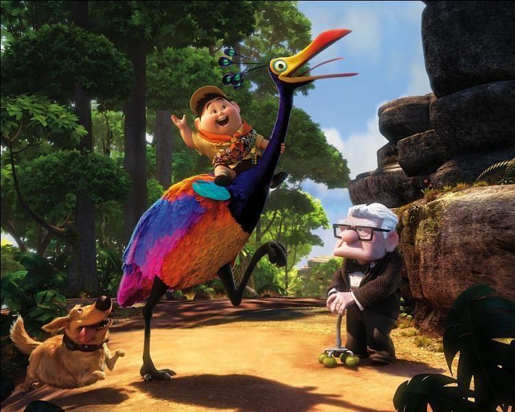 Le Dabou Disney Pixar Up Up Animated Movie Up Animation