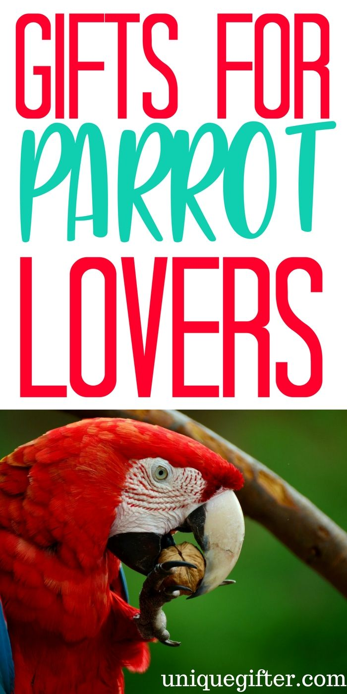 20 Gift Ideas for Parrot Lovers | PIMP Lucky | Pinterest | Gifts ...