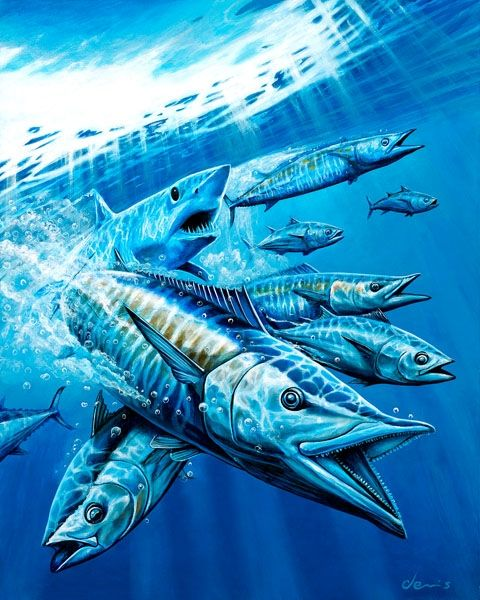 Pin Di Guy Harvey Artist And Others Well Known Artist