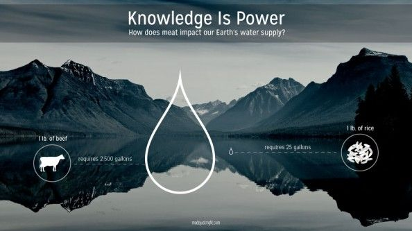 knowledge is power presentation