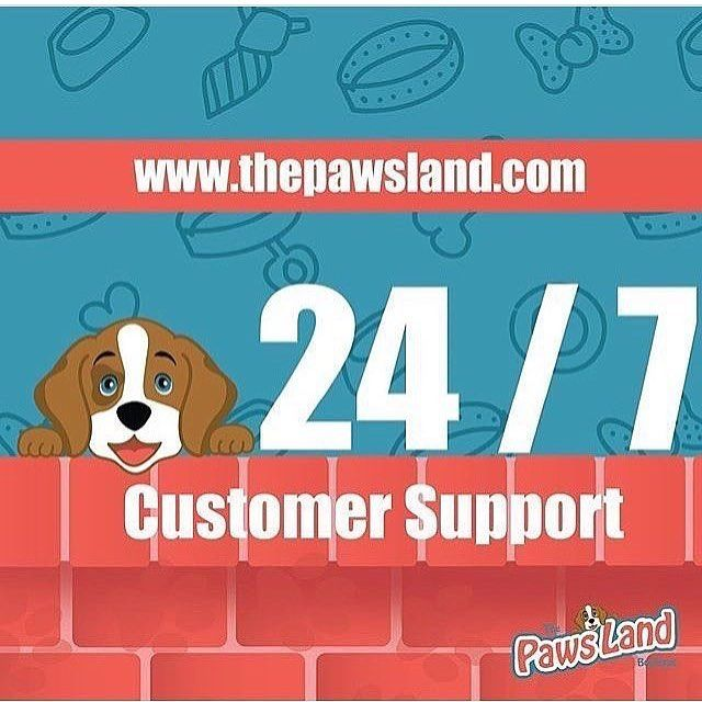 We work for you!! 24 / 7 customer support  #thepawsland #dogs #cats #onlineboutique #boutiqueonline #dogs #dogstagram #dogboutique #pettoy #petlovers #dogs #dogsofinstagram #ilovemydog #instagramdogs #dogstagram #lovedogs #doglover  #buynow #sales #dogtoy #bowl