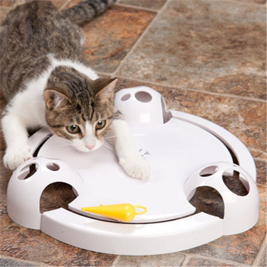 Pet Electric Cat Turntable Toy Mouse Interactive Goods Gatos Products For Animals Game Durable Funny Pet Cat Toy Cute Qqm2234 Pet Cat Toys Cat Toys Cats