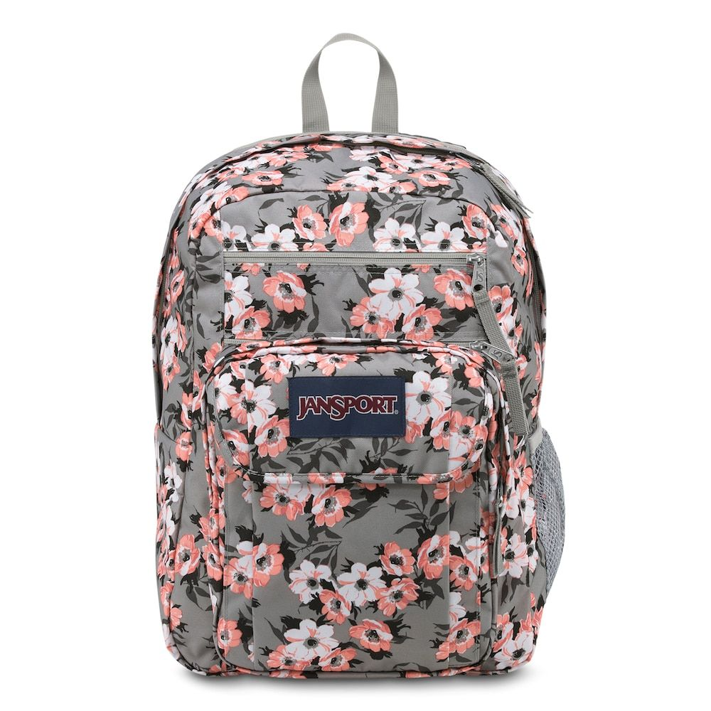 fbad04c4b JanSport Digital Student 15-in. Laptop Backpack, Clrs | Laptop ...