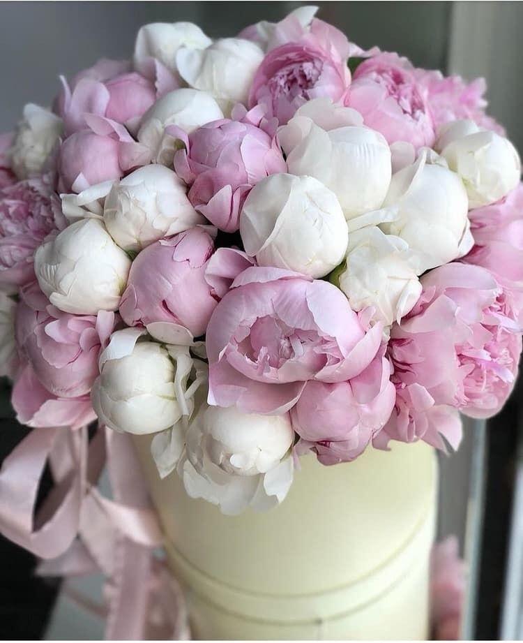 Пионы и розы открытки с днем рождения, днем