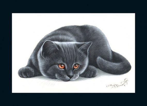 Кошки от художницы Ирины Гармашовой.. Обсуждение на ...