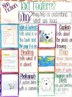 nonfiction text features anchor chart