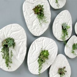 SEED by Taeg Nishimoto is an object to be hung on the wall incorporating small plants as the focus. Each profile is taken from different river stones' shape.