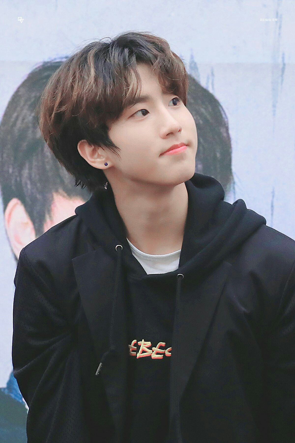 Han Han Jisung Baby squirrel, Kids icon, People