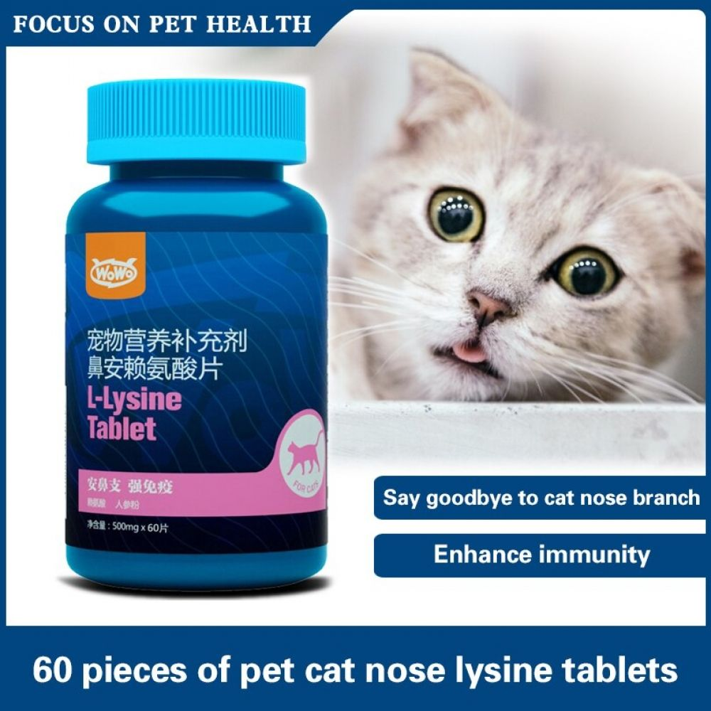 Upper Respiratory Infections In Cats Natural Feline Uri Treatments In 2020 Upper Respiratory Infection Cat Health Problems Respiratory Infection