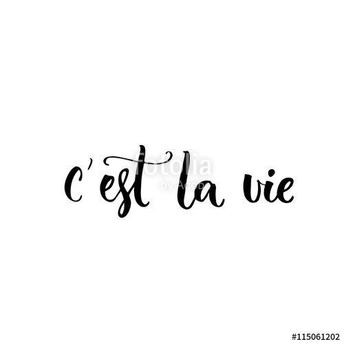 Vector: C'est la vie. French phrase means that's life. Brush ...